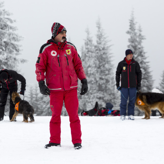 """Red Cross rescuers with dogs"" stock image"