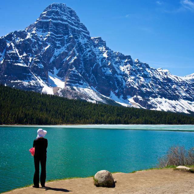 """Waterfowl Lake and Mount Chephren"" stock image"