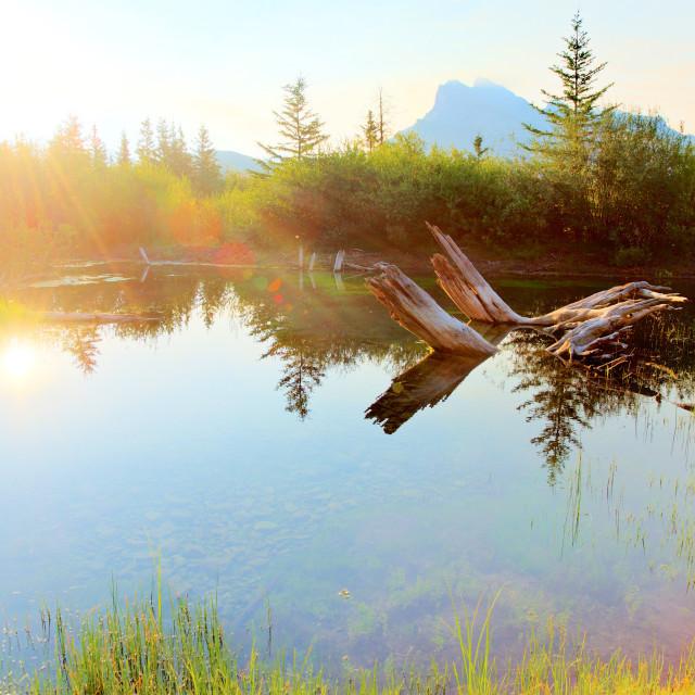 """Vermillion Lakes Morning"" stock image"