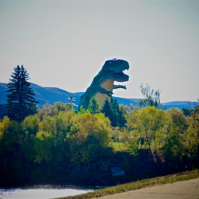 """Tyrannosaurus Rex"" stock image"