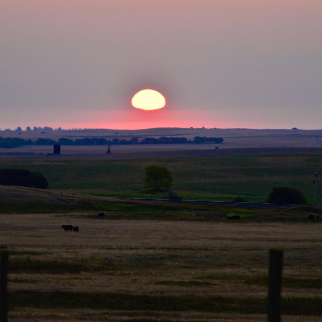 """""""Saskatchewan Sunrise"""" stock image"""