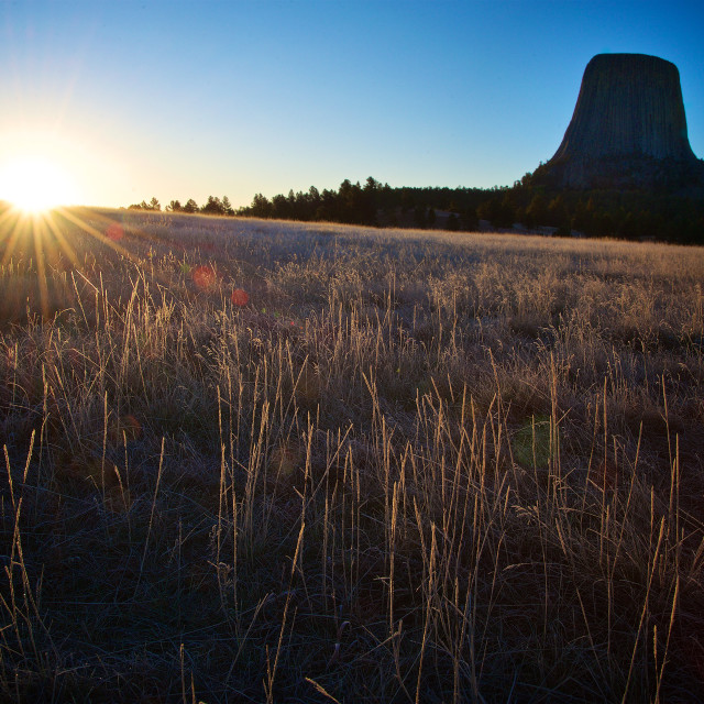 """""""Devils Tower Dawn"""" stock image"""