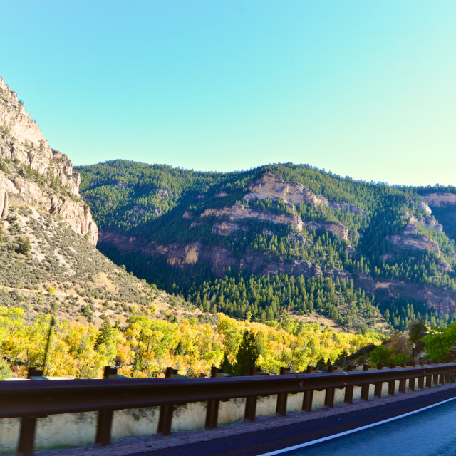 """""""Bighorn National Forest"""" stock image"""