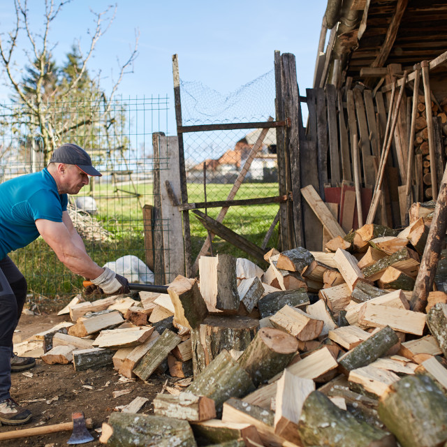 """Man splitting wood"" stock image"
