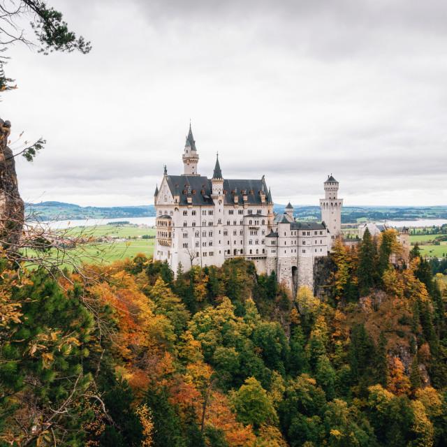 """Neuschwanstein castle in colorful autumn"" stock image"