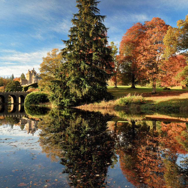 """Autumn Tree Reflection"" stock image"