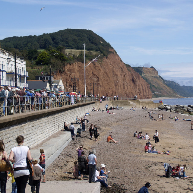 """""""Sidmouth in Summer"""" stock image"""