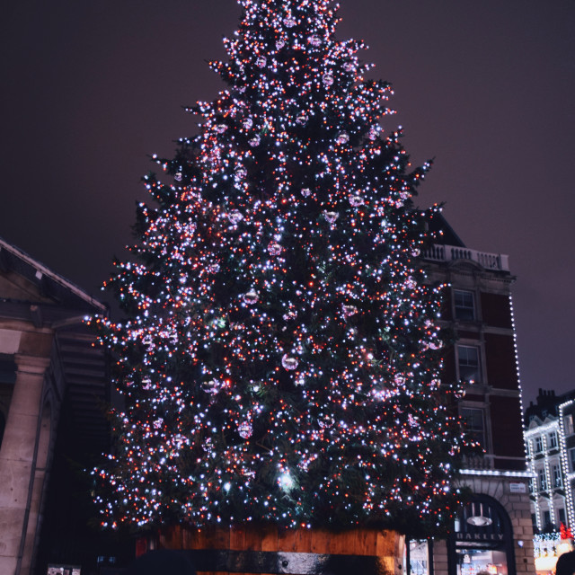 """Covent Garden Christmas tree"" stock image"