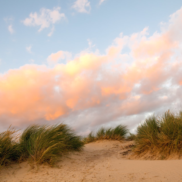 """""""Sunset at the Dunes"""" stock image"""