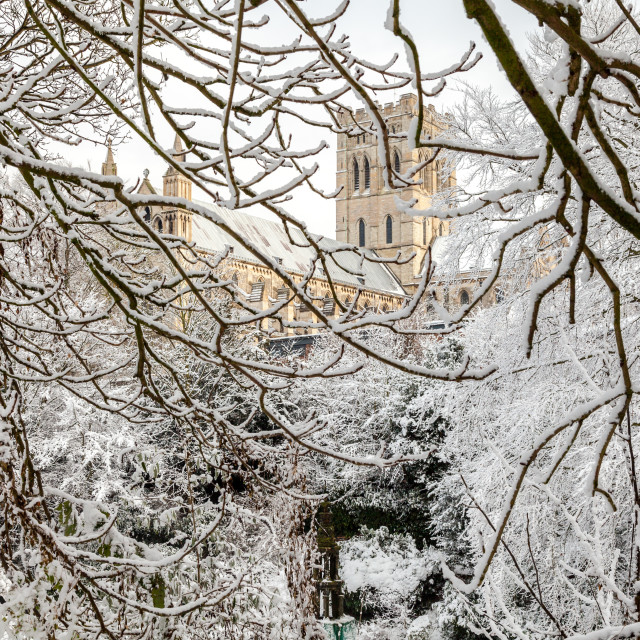 """""""St Johns Cathederal"""" stock image"""