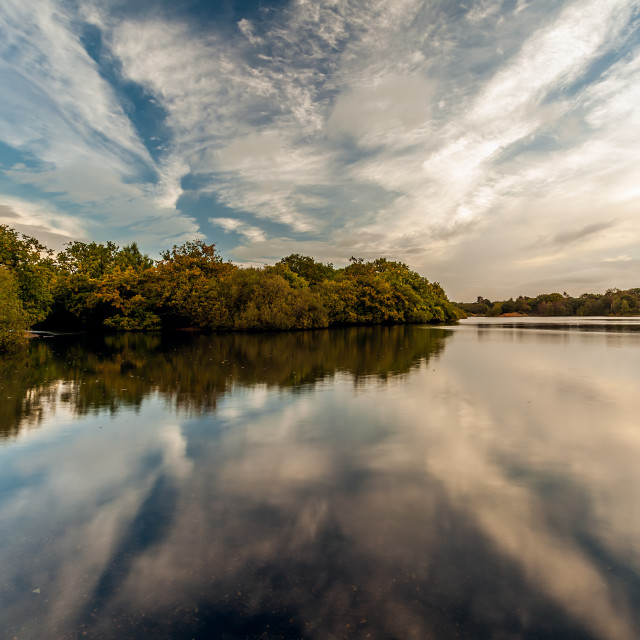"""""""Hollow Ponds Symetry"""" stock image"""