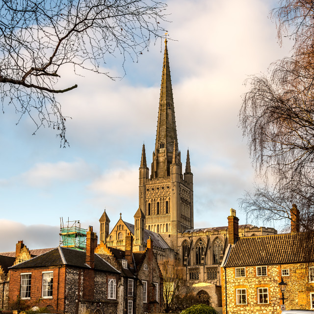 """""""Norwich Great Spire"""" stock image"""
