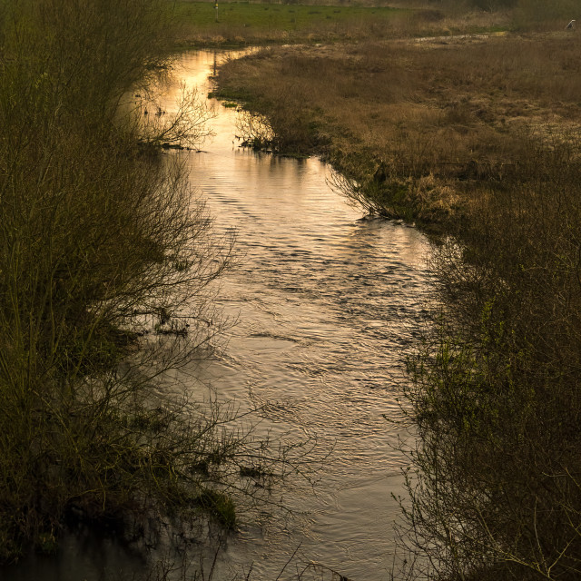 """Wensum Valley"" stock image"