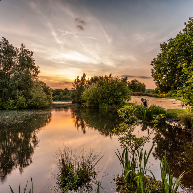 """Hollow Ponds Sunset"" stock image"