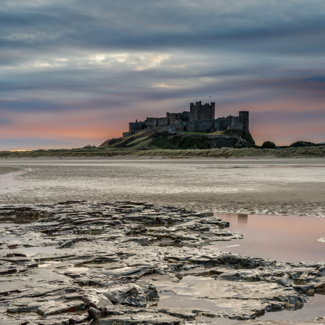 """Bamburgh Castles subdued solstice sunrise."" stock image"