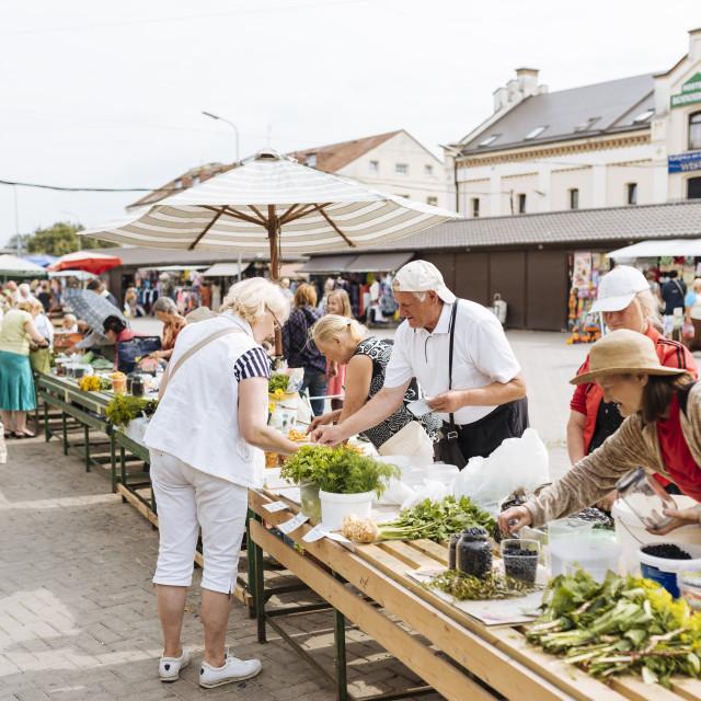 """Riga Central Market, Riga, Latvia, Baltic States, Europe"" stock image"