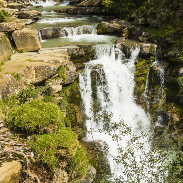 """Steps of limestone strata make a waterfall on the Rio Arazas, upper Ordesa..."" stock image"