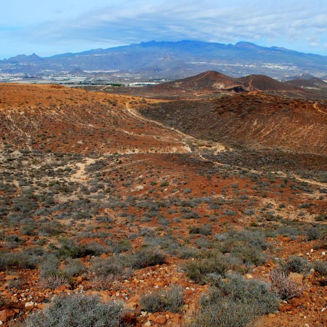 """View from Montaña Amarilla #2"" stock image"