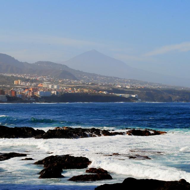 """""""Punta del Hidalgo #1"""" stock image"""