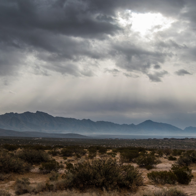 """""""Franklin Mountains"""" stock image"""