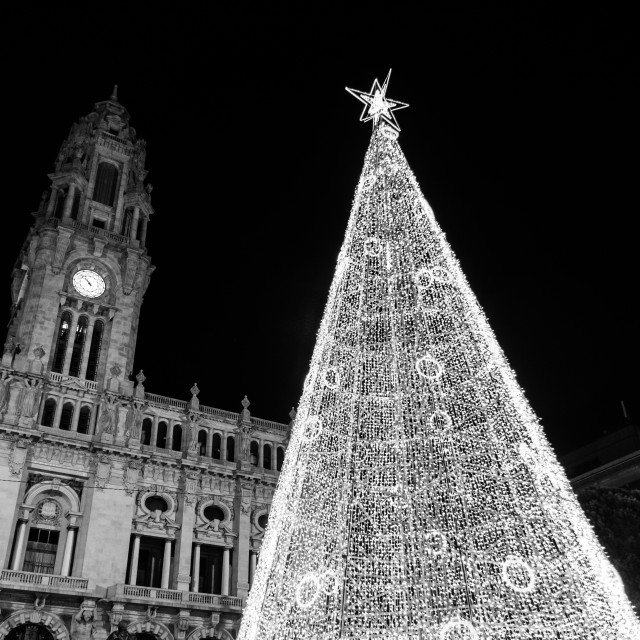 """""""Christmas Tree in front of Porto's city hall"""" stock image"""