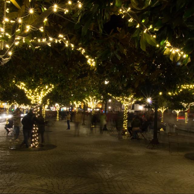 """Avenue of Lights"" stock image"
