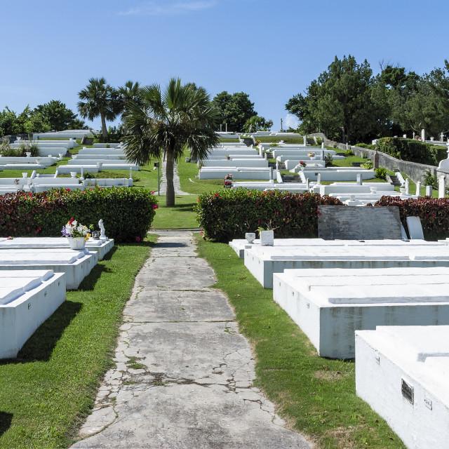 """Limestone crypts in Pembroke Parish cemetery, Bermuda"" stock image"
