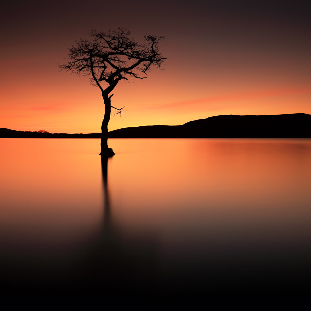 """Loch Lomond Afterglow"" stock image"