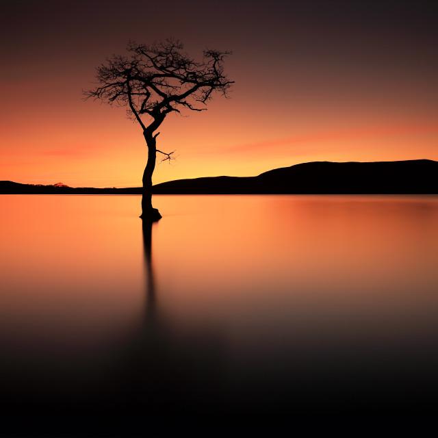 """Loch Lomond Afterglow"" stock image"