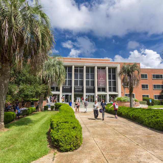 """Stozier Library at Florida State University"" stock image"