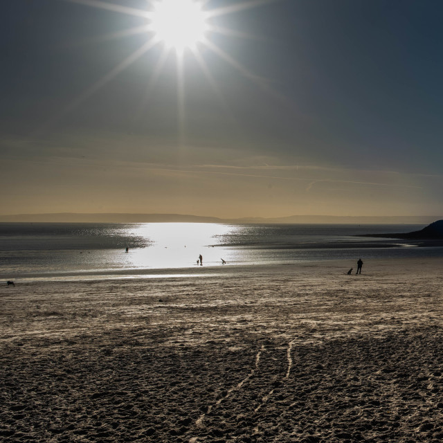 """Winter sunshine, Barrybados"" stock image"
