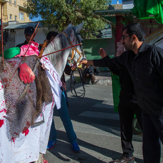 """""""Horse Of Iman Hussein With Fake Blood On It During The Parade Of Ashura..."""" stock image"""