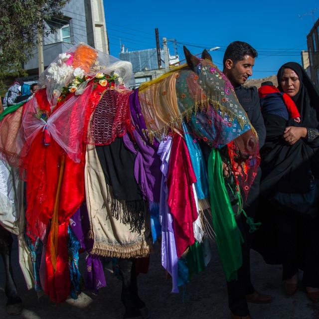 """Horse Of Iman Hussein During The Parade Of Ashura Celebrations, Kurdistan..."" stock image"