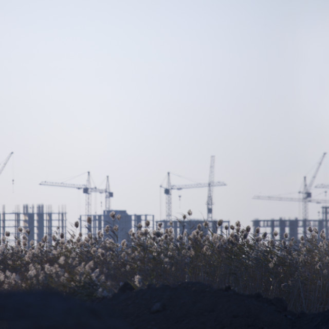 """Buildings And Cranes In The Steppe, Astana, Kazakhstan"" stock image"
