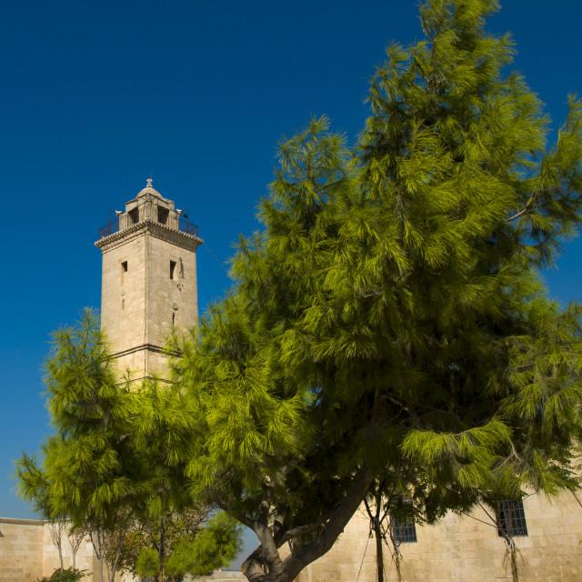 """Aleppo Citadel, Syria"" stock image"