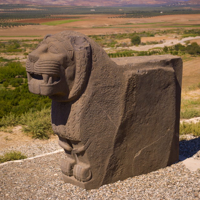 """Massive Basalt Hittite Lion Carving, Syria"" stock image"