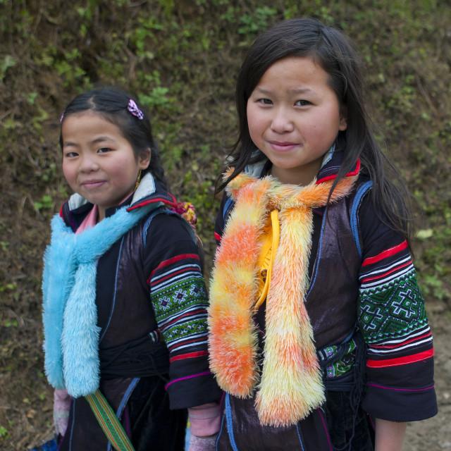 Cute hmong girls, deep virginal porn pics
