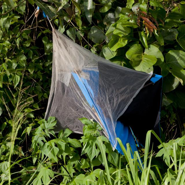 """Mosquito Net Against Malaria, Angola"" stock image"