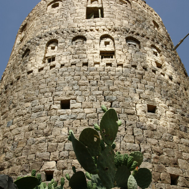 """Cactus Under A Tower, Shahara, Yemen"" stock image"