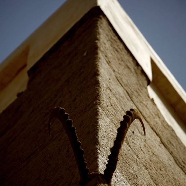 """""""Ibex Horns Hung On The Wall Of A House, Wadi Doan, Yemen"""" stock image"""