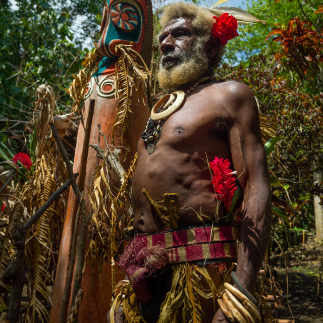 """""""Portrait of chieftain Etul in front of a giant slit drum, Ambrym island,..."""" stock image"""