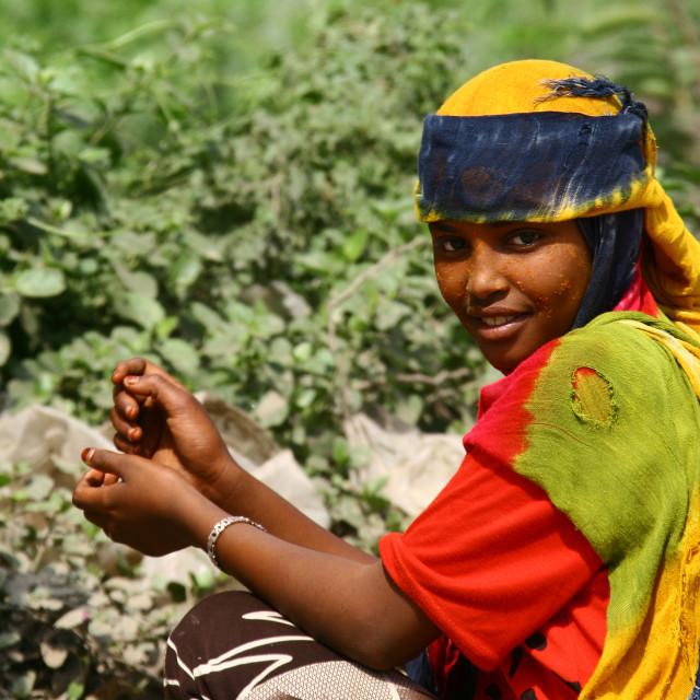 """GIRL FROM JEBEL SABER, YEMEN"" stock image"