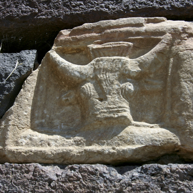 """Bull Head Carved In Stone Of A House Wall, Rada, Yemen"" stock image"