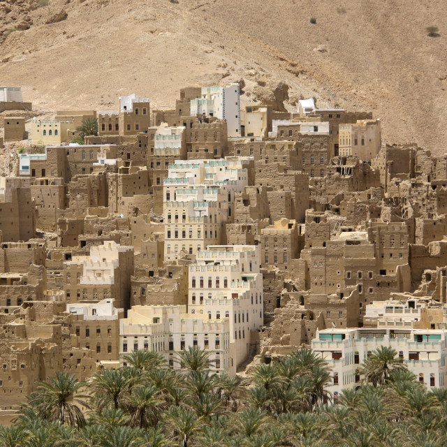"""View Over Adobe And Painted Buildings, Wadi Doan, Yemen"" stock image"
