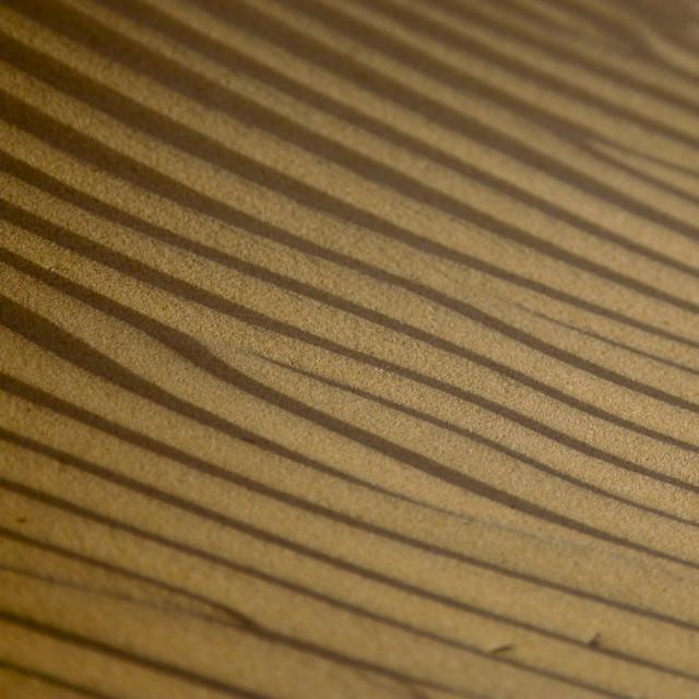 """Waves On A Sand Dune, Marib Desert, Yemen"" stock image"