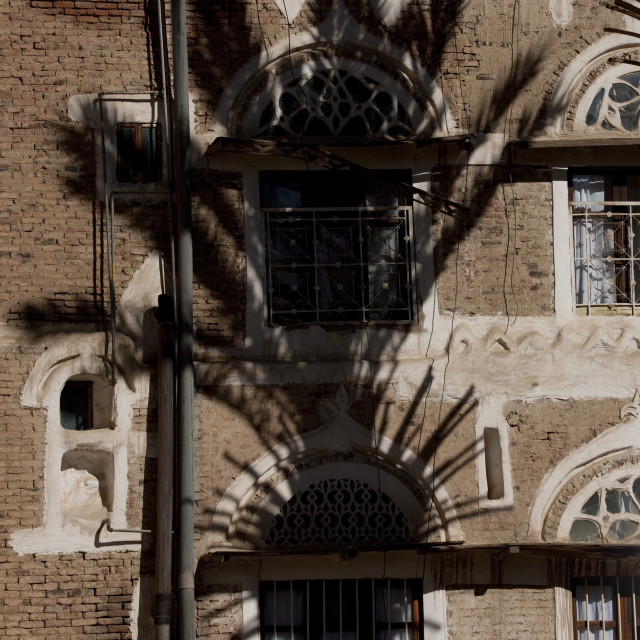"""Shadow Of A Palm Tree On A Traditional Building In Sanaa, Yemen"" stock image"
