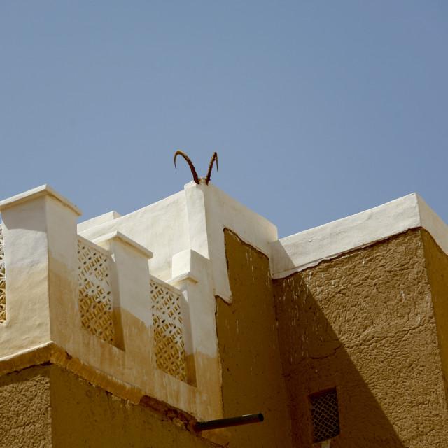 """Ibex Horns Hung On A House, Wadi Doan, Yemen"" stock image"
