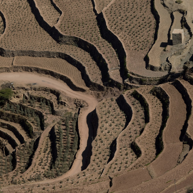 """Terrace Cultivation, Kholan, Yemen"" stock image"