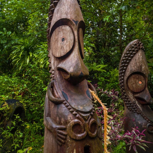 """""""Slit gong drums in the jungle on a ceremonial ground called nasara, Ambrym..."""" stock image"""