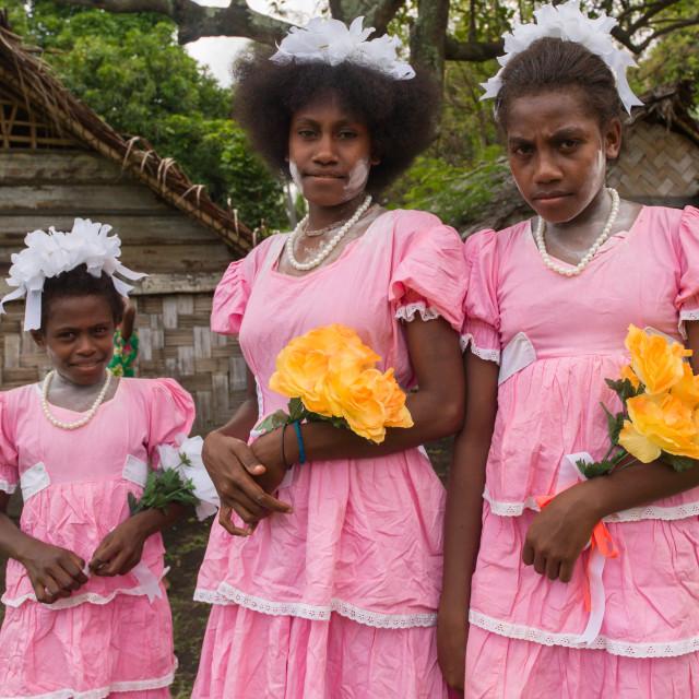 """""""Bridesmaids wearing matching pink patterned dresses, Malampa Province, Ambrym..."""" stock image"""